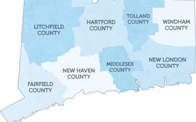 Stamford and Fairfield County Non-profits to Explore